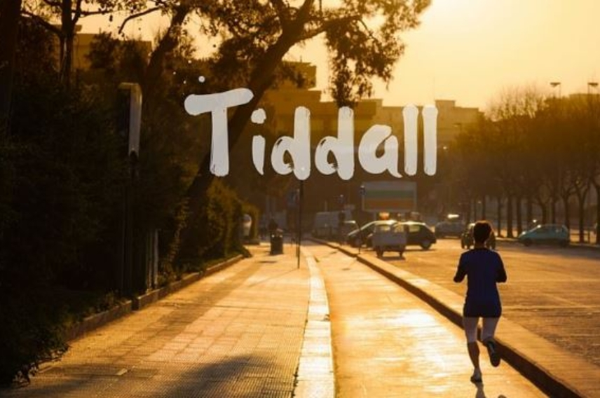 Why we turned down an investor - Tiddal